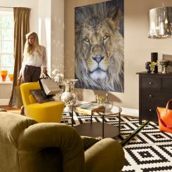 1_619_Lion_Interieur_i.jpg