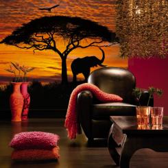 4_501_African_Sunset_Interieur_i.jpg