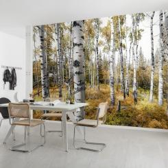 shx9_015_colorful_aspenwoods_interieur_i_ma.jpg
